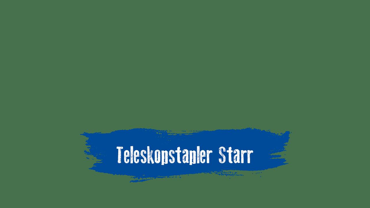 Starre Teleskopstapler mieten und kaufen