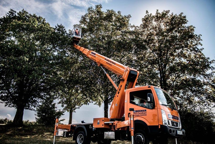 Arbeitsbühnen für Baumschnitt mietenLKW-Arbeitsbühnen für Baumschnitt-Arbeiten
